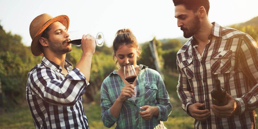 organiza una cata de vinos con un catering en Menorca