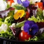 Un menú muy primaveral para tu boda en Menorca